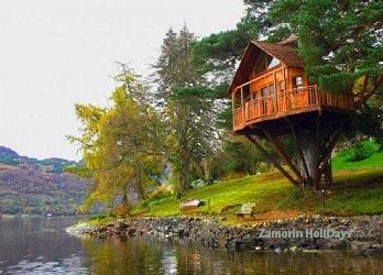tree-house-in-munnar-kerala