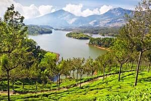 Munnar-tour-packages