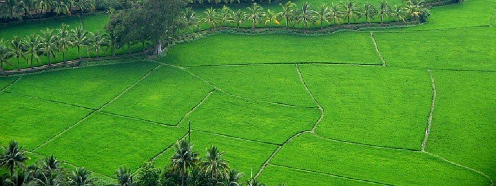 Best Places to Visit in Kerala- 2019